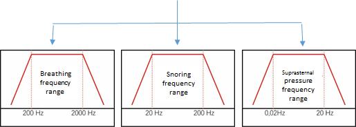 Graph 3 EN
